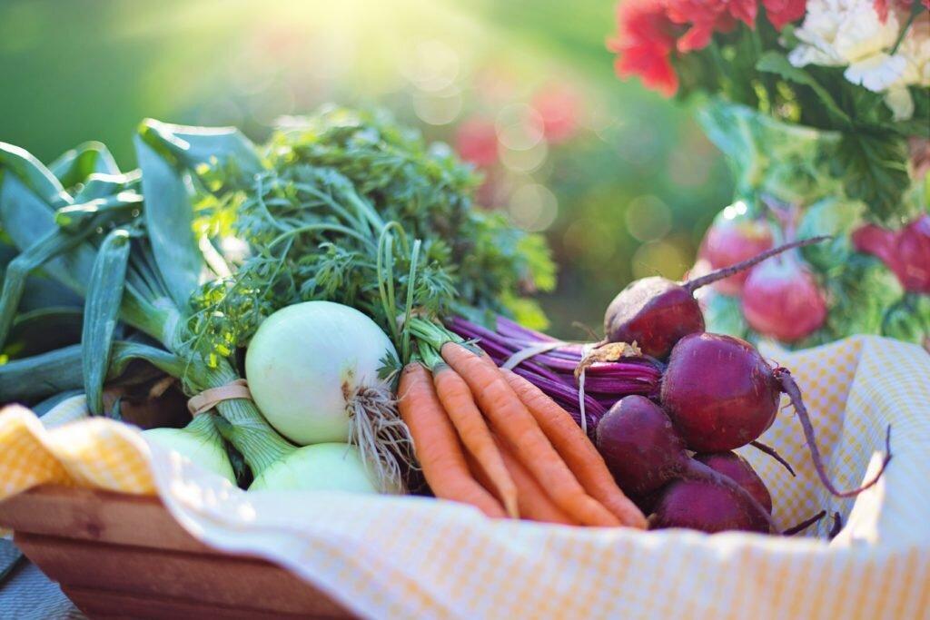 alimentos que fortalecem a imunidade das crianças 4