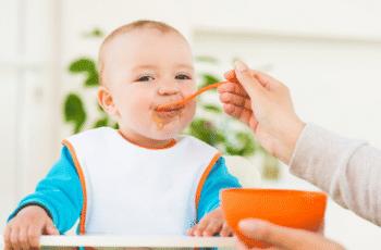 O-manual-das-papinhas-para-bebês